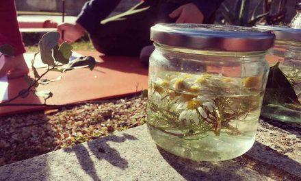 Practical learning through flower essences